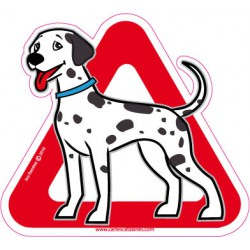 Dalmatian on board - Stickers