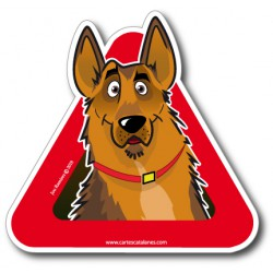 German Shepherd on board -...