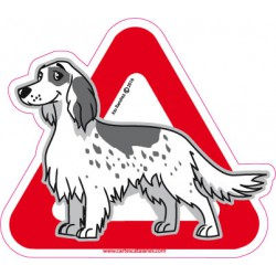 Setter on board - Stickers