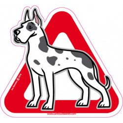 Great dane on board - Stickers