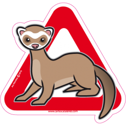 Ferret on board - Stickers