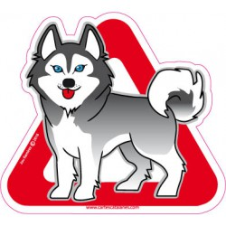 Husky on board - Stickers