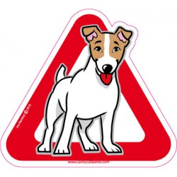 Jack Russell a bord