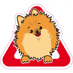 Pomeranian on board - Stickers