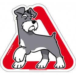 Schnauzer on board - Stickers